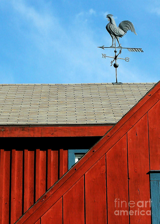 Rooster Weathervane Photograph