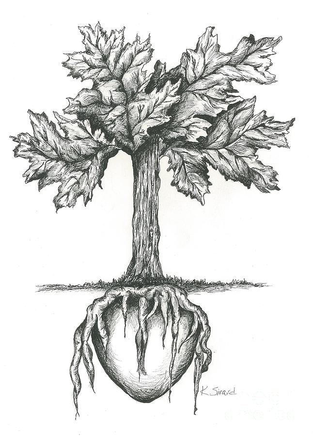 Roots Of The Heart Drawing