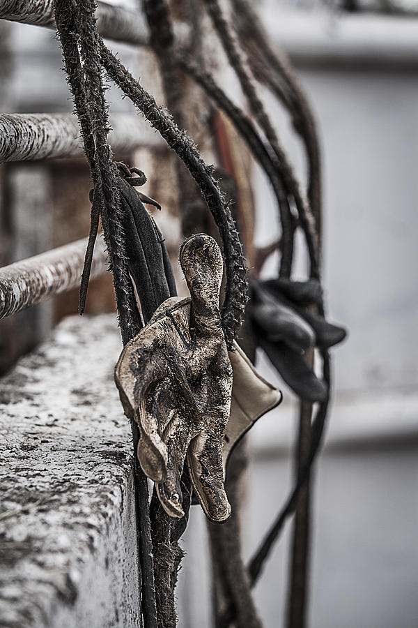 Ropes And Gloves Photograph  - Ropes And Gloves Fine Art Print