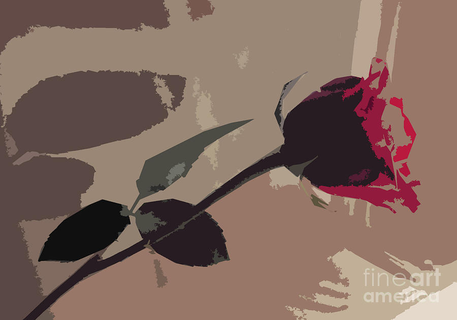Rose In Abstract Digital Painting Photograph