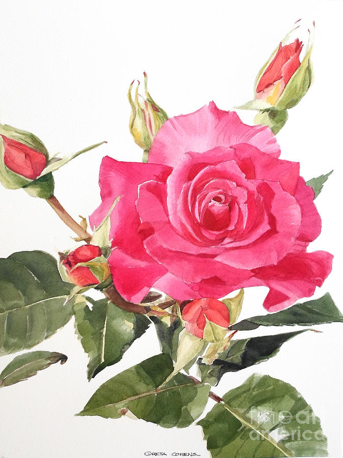 Watercolor Red Rose Margaret Painting