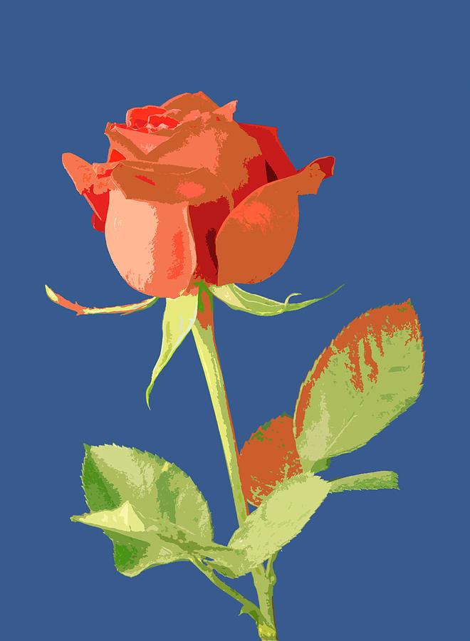 Art Pyrography - Rose On Blue by Mauro Celotti