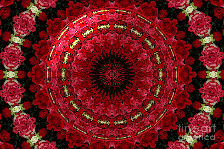 Roses kaleidoscope under glass 12 photograph by rose for Rose under glass