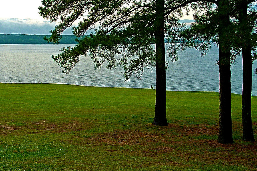 Ross Barnett Reservoir Along Natchez Trace Parkway-ms Photograph  - Ross Barnett Reservoir Along Natchez Trace Parkway-ms Fine Art Print