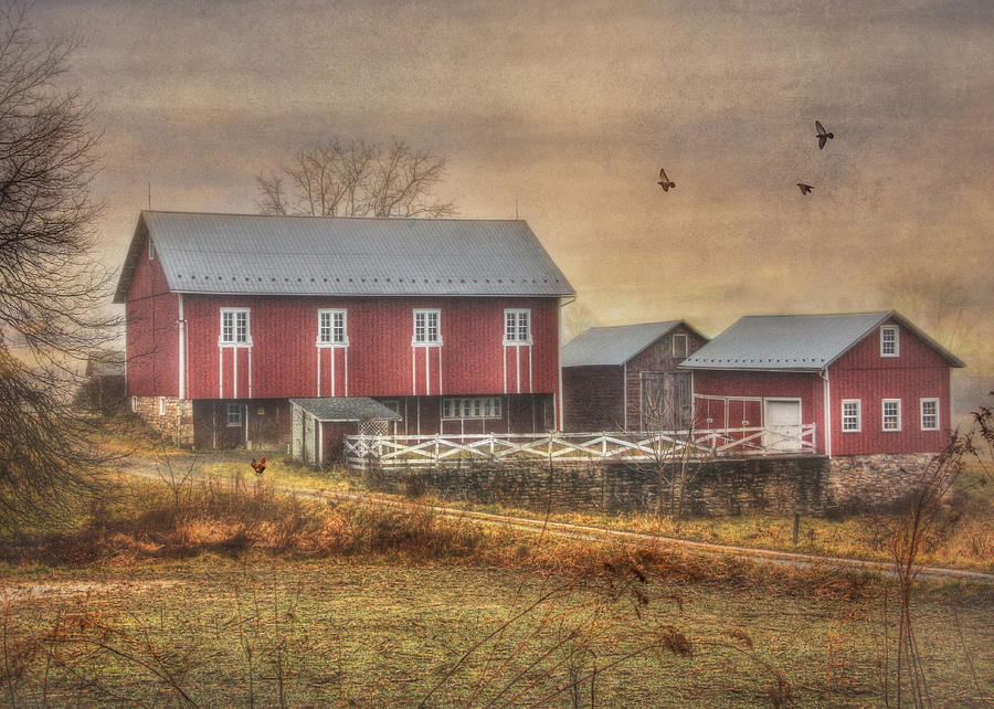 Route 419 Barn Photograph