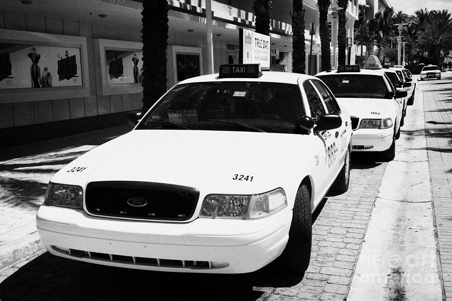 Row Of Yellow Cab Taxis In Miami South Beach Florida Usa Photograph