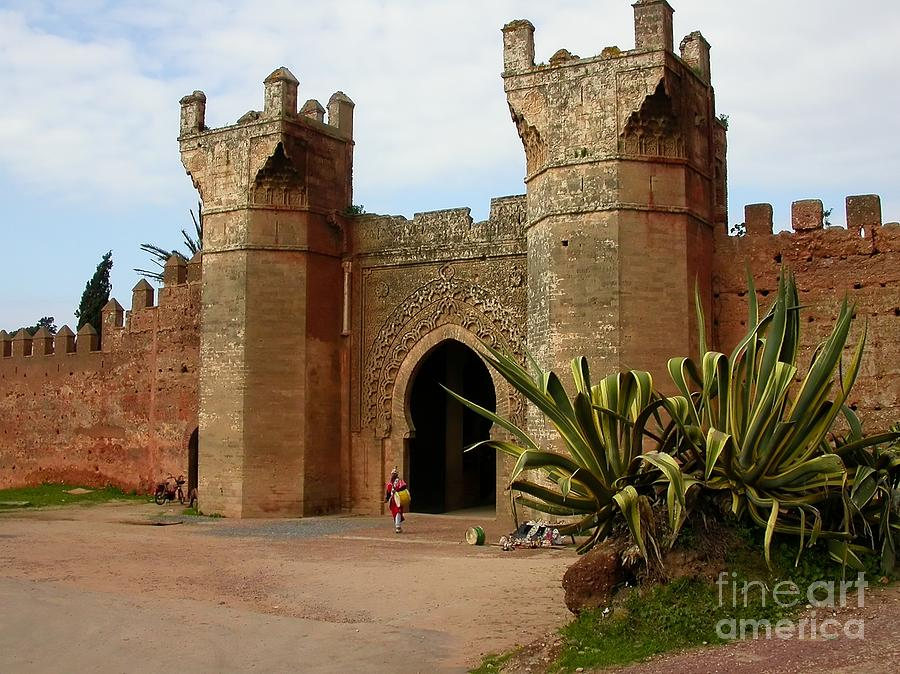 Morocco Photograph - Royal Grounds by Sophie Vigneault