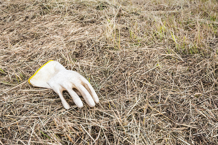Rubber Glove In The Field Photograph  - Rubber Glove In The Field Fine Art Print