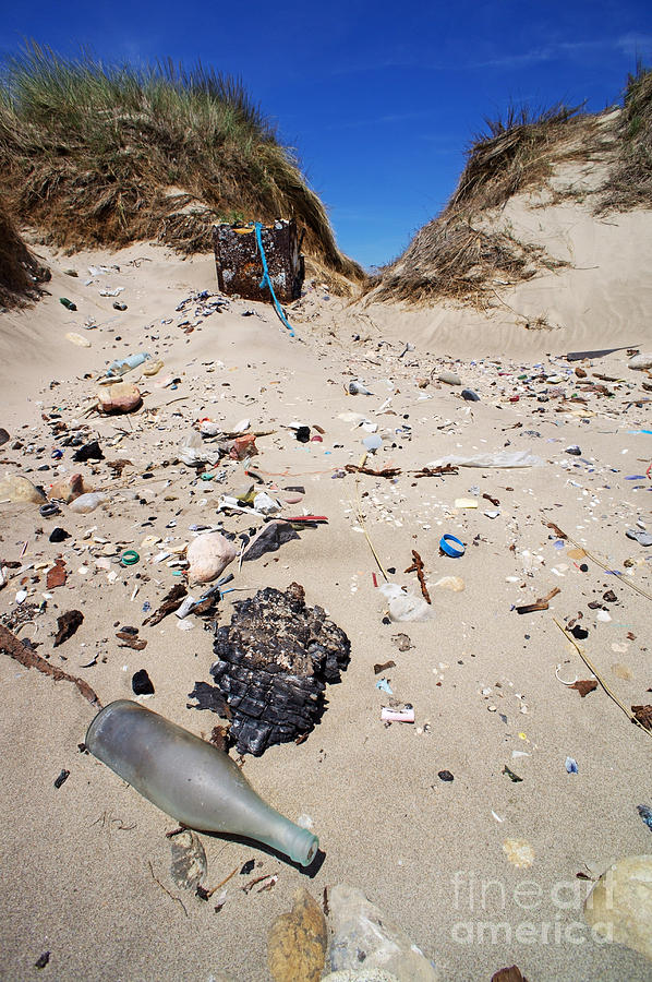 Bottle Photograph - Rubbish On A Sand Dune by Sami Sarkis