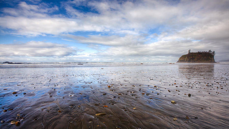 Ruby Beach Photograph  - Ruby Beach Fine Art Print