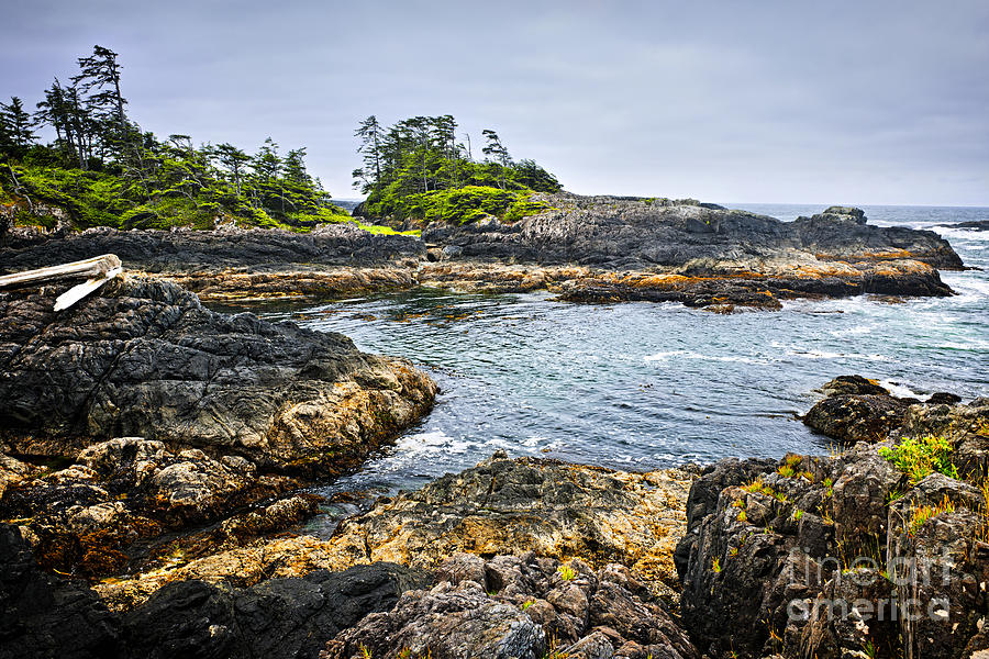 Rugged Coast Of Pacific Ocean On Vancouver Island Photograph