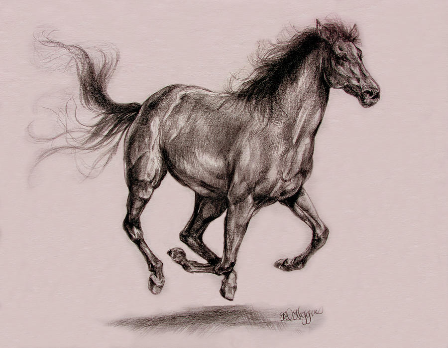 Horses running drawing - photo#10