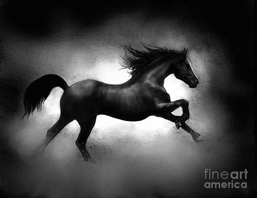 Running Horse PaintingImages Of Black Horses Running