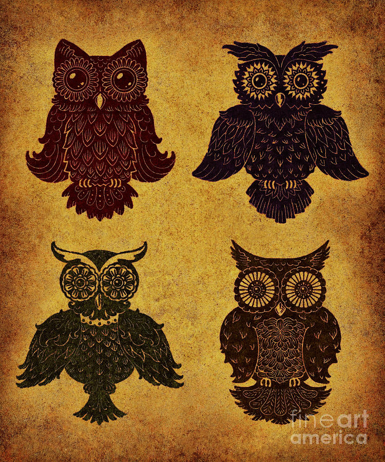 Rustic Aged 4 Owls Digital Art