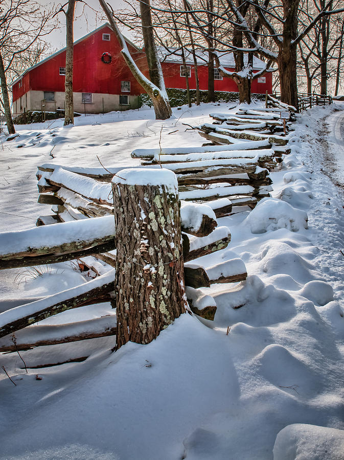Rustic Fence To Maple Hill Farm - Roxbury Ct Photograph