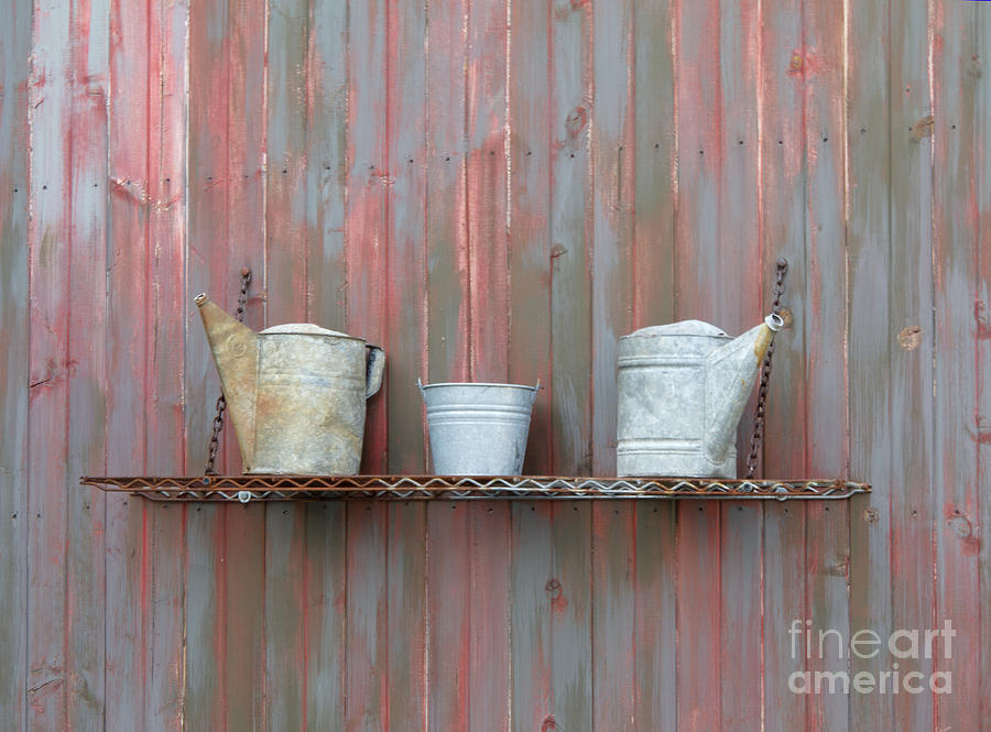Rustic Garden Shelf Photograph  - Rustic Garden Shelf Fine Art Print