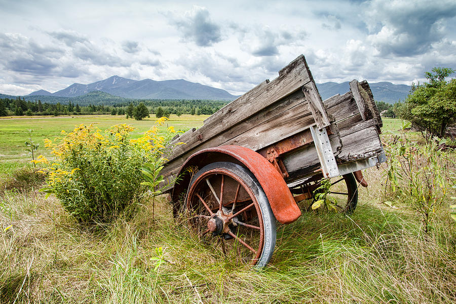 Rustic Landscapes - Wagon And Wildflowers Photograph