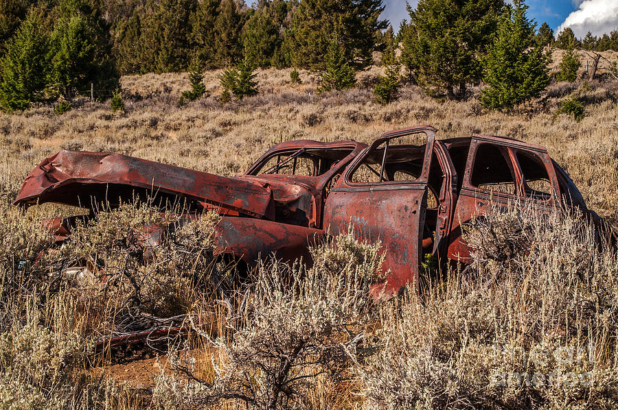 Rusty Automobile Photograph  - Rusty Automobile Fine Art Print