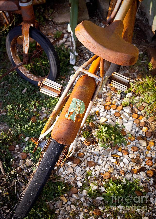 Rusty Bike Bumper Photograph