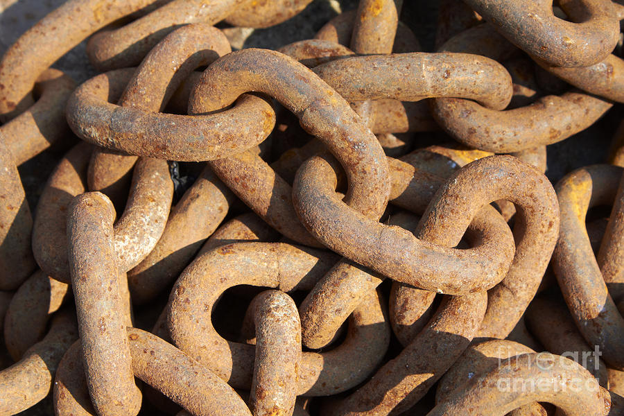 Metal Photograph - Rusty Chain by Tony Cordoza
