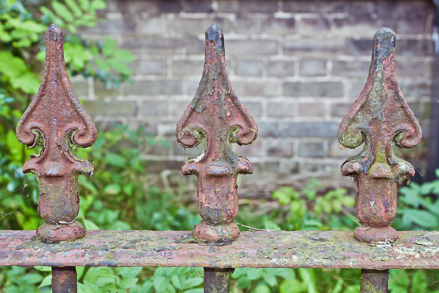 Architecture Photograph - Rusty Fence Spikes by Tom Gowanlock