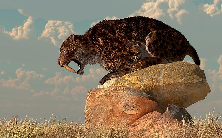 Saber-tooth On A Rock Digital Art