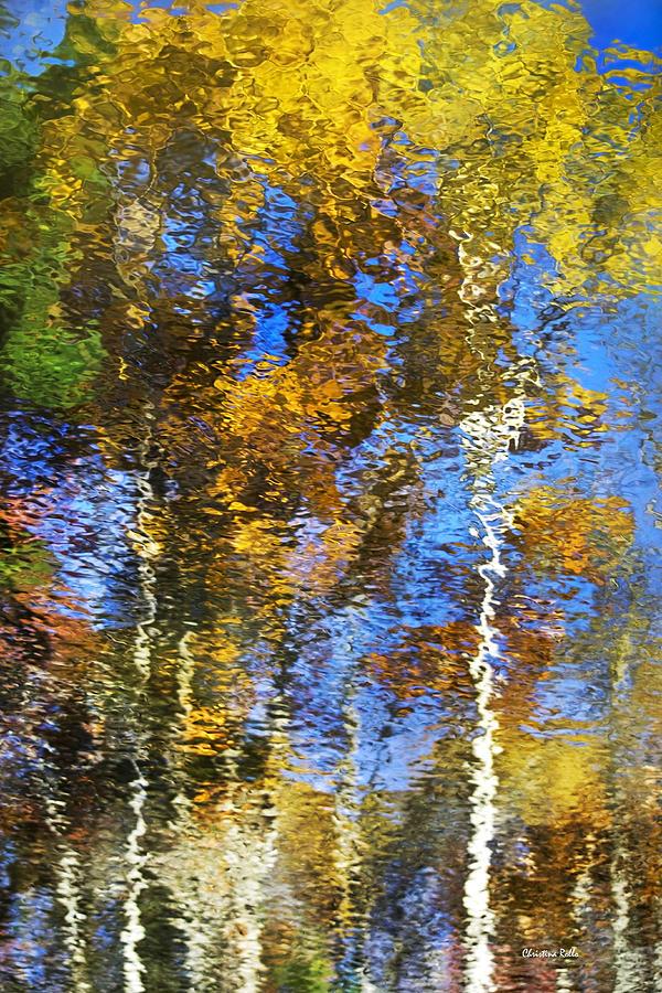 Safari Photograph - Safari Mosaic Abstract Art by Christina Rollo
