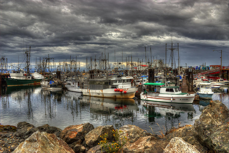 Marina Photograph - Safe Haven by Randy Hall