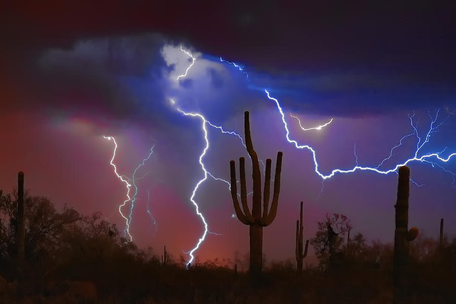 Saguaro Photograph - Saguaro Lightning Nature Fine Art Photograph by James BO  Insogna