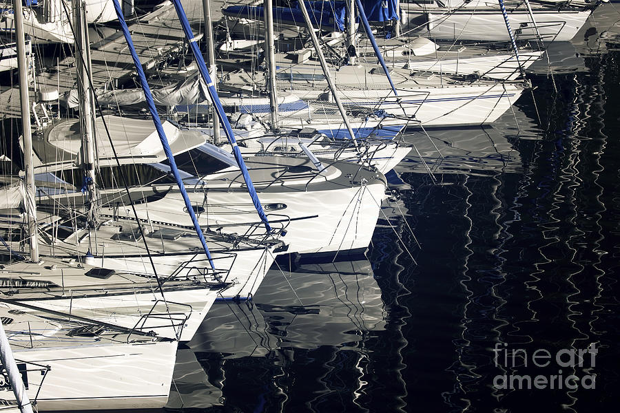 Sailboat Bow Photograph  - Sailboat Bow Fine Art Print