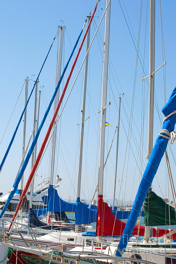 Sailing Photograph - Sailboat Masts by Artist and Photographer Laura Wrede