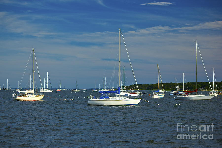 Sailboats Photograph  - Sailboats Fine Art Print