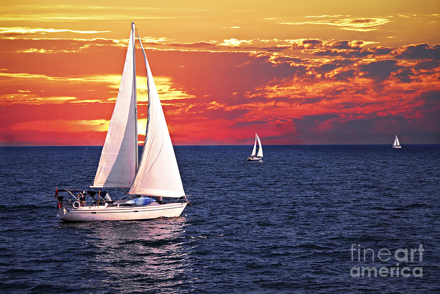 Sailboats At Sunset Photograph