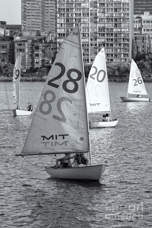 Sailboats On The Charles River II Photograph