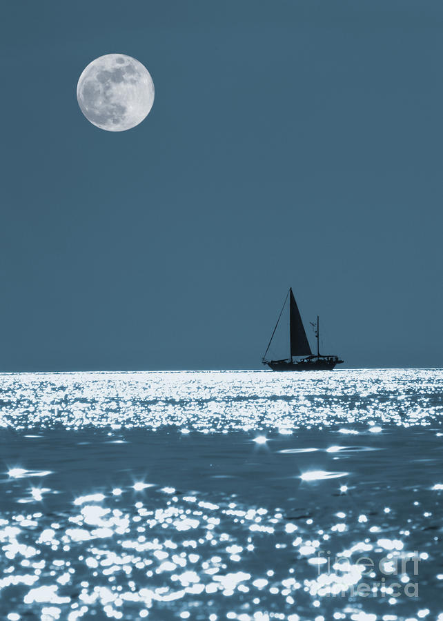 Sailing At Night Photograph