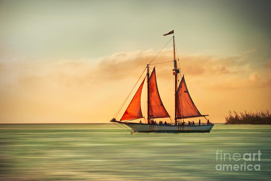 Sailing Into The Sun Photograph