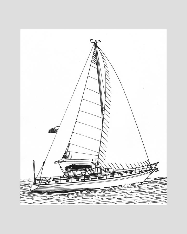Ink Drawings  By Jack Pumphrey Of Yacht Photograph - Sailing Sailing Sailing by Jack Pumphrey