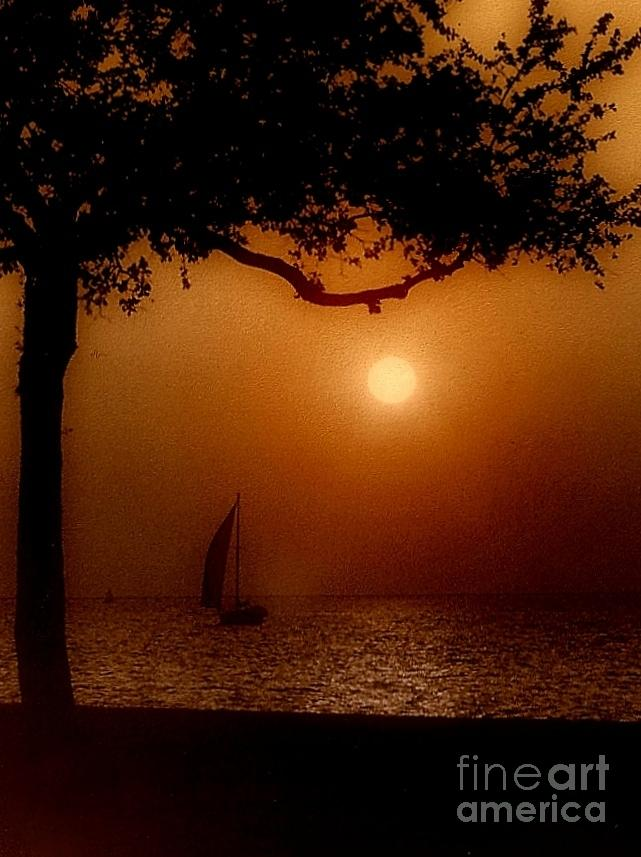 Boat Photos Photograph - Sailing Sunset by Michael Hoard