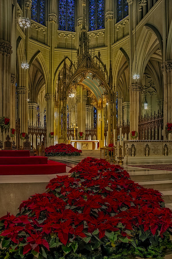Saint Patrick's Cathedral Photograph - Saint Patricks Cathedral by Susan Candelario
