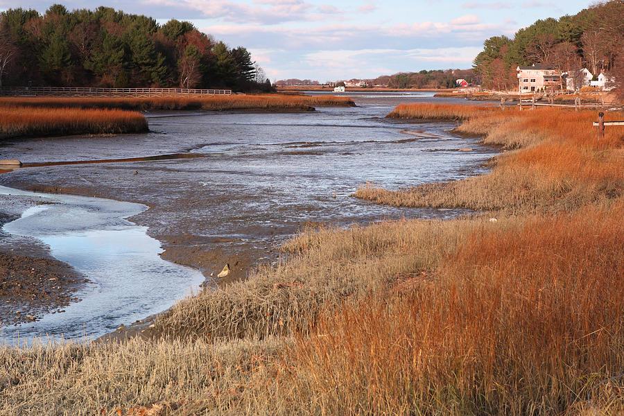 Parks Ocean Water Willows Massachusetts Ipswich Photograph - Salem Willows Park Ipswich Mass by Gail Maloney