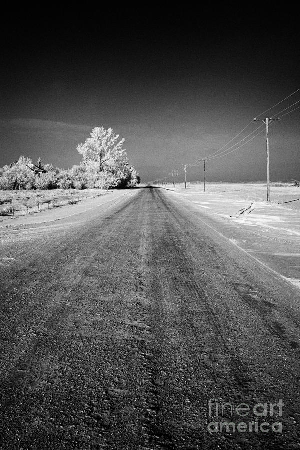 salt and grit covered rural small road in Forget Saskatchewan Canada Photograph