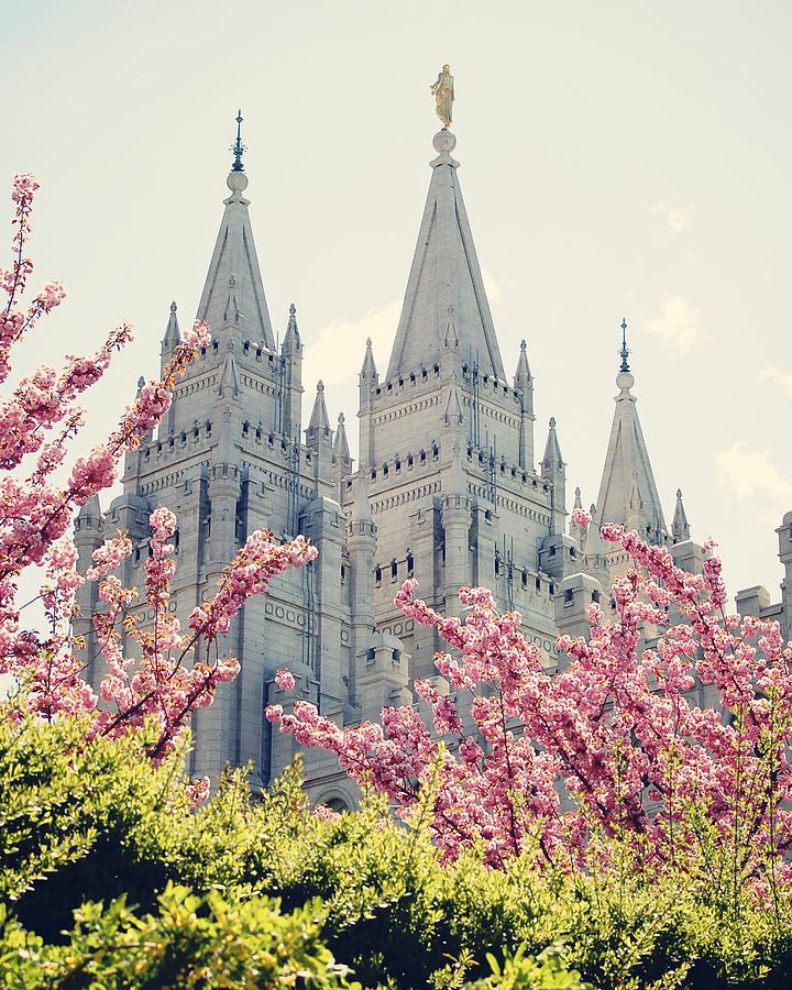 Salt Lake Temple In Spring is a photograph by Todd and Ashleigh Madsen ...