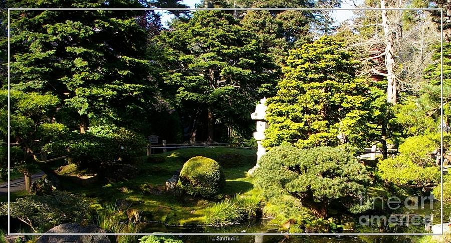 San Francisco Golden Gate Park Japanese Tea Garden 1 Photograph