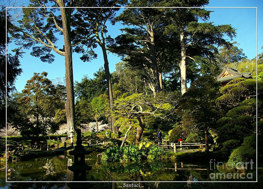 Pagodas Photograph - San Francisco Golden Gate Park Japanese Tea Garden 11 by Robert Santuci