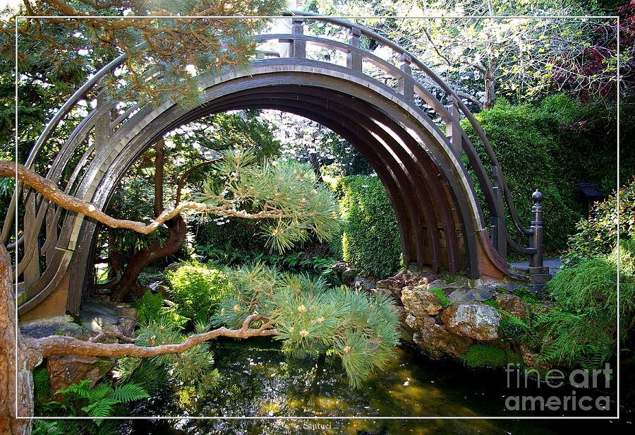 San Francisco Golden Gate Park Japanese Tea Garden 4 Photograph