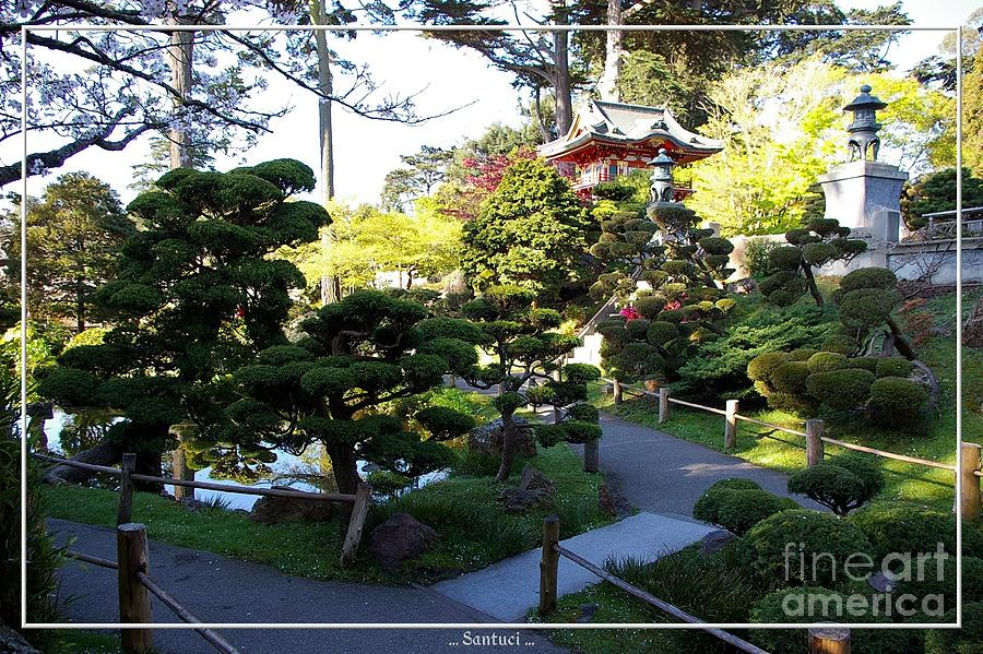 Pagodas Photograph - San Francisco Golden Gate Park Japanese Tea Garden 6 by Robert Santuci