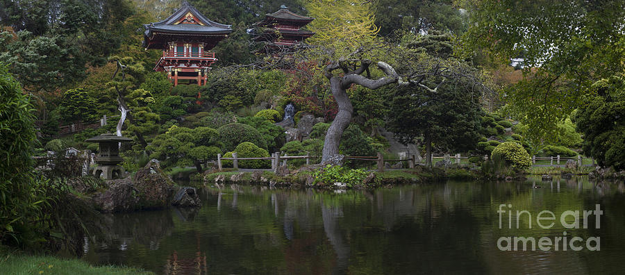 San Francisco Japanese Garden Photograph