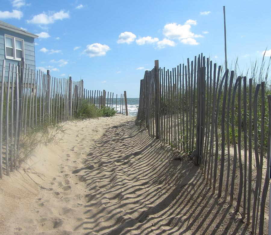 Sand Fence At Southern Shores  Photograph  - Sand Fence At Southern Shores  Fine Art Print
