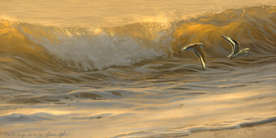 Sanderlings Digital Art  - Sanderlings Fine Art Print