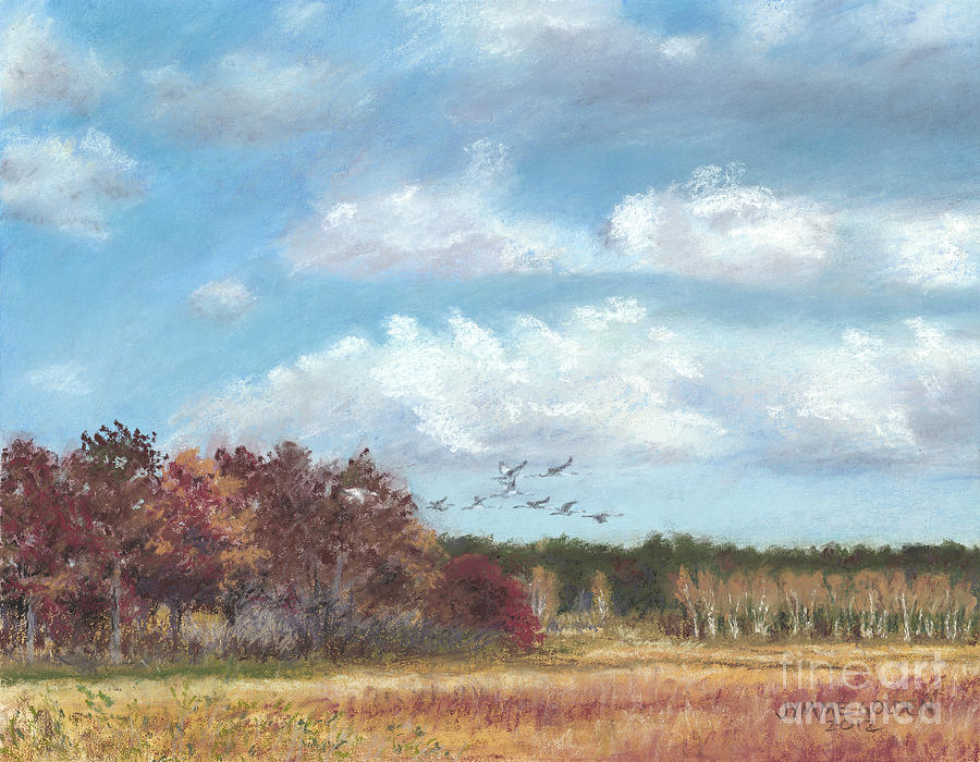 Sandhill Cranes At Crex With Birch  Painting  - Sandhill Cranes At Crex With Birch  Fine Art Print